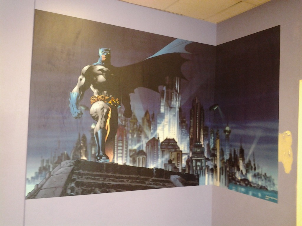 custom wallpaper murals by wallpaper contractors